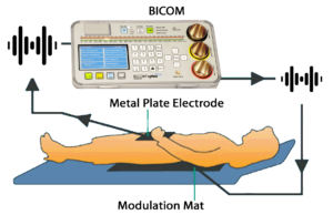 Bicom Bioresonance therapy set up